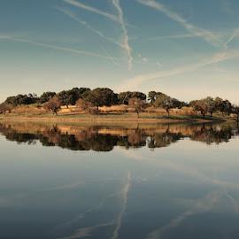 mirror by Francisco Cardoso - Landscapes Waterscapes ( mirror, blue, alqueva, island )