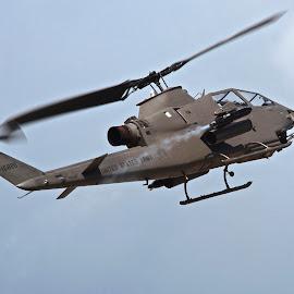 Cobra Strike by Jim Baker - Transportation Helicopters