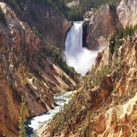 Yellowstone Falls by Jennifer  Loper  - Landscapes Waterscapes
