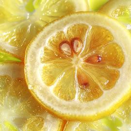 Lemons by Sam Song - Food & Drink Fruits & Vegetables ( fruits )