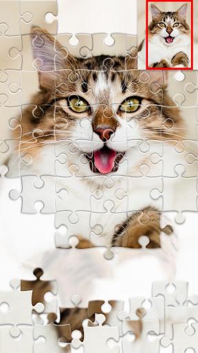 Jigsaw1000 - Jigsaw puzzles For PC