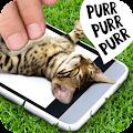 Game Pat the cat APK for Windows Phone