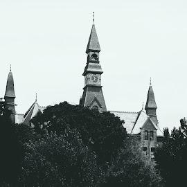 by Cara Losh - Buildings & Architecture Public & Historical