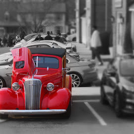 by Cecilia Sterling - Transportation Automobiles