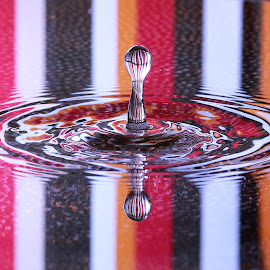 by Bob Anthony - Abstract Water Drops & Splashes