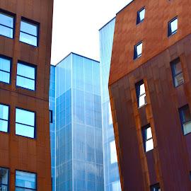 Rusty beauty by Eirin Hansen - Buildings & Architecture Office Buildings & Hotels