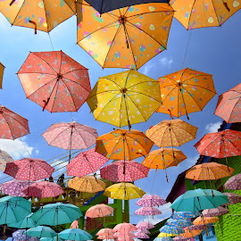 Umbrellas Art by Kinga Urban - Artistic Objects Other Objects