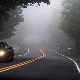 by BethSheba Ashe - Transportation Roads ( car, lights, fence, america, fog, foglights, trees, road, evening )