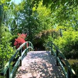 Monet's Bridge by Gary Ambessi - Buildings & Architecture Bridges & Suspended Structures