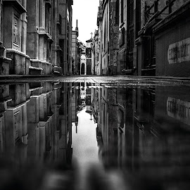 Reflection by Edi Libedinsky - Black & White Buildings & Architecture ( creepy, reflection, tomb, black and white, cemetery, dark, gloomy )