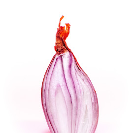 Onion by Adrian Minda - Food & Drink Fruits & Vegetables ( red onion, close up, onion, vegetable, food )