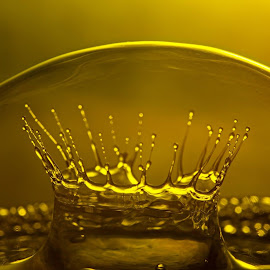 Crown in a bubble by Yougz Lauer - Nature Up Close Water ( water, bubble, macro, droplet, crown, gold )