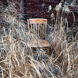 Lonely Chair by Michael Lunn - Artistic Objects Furniture ( chair, weeds )