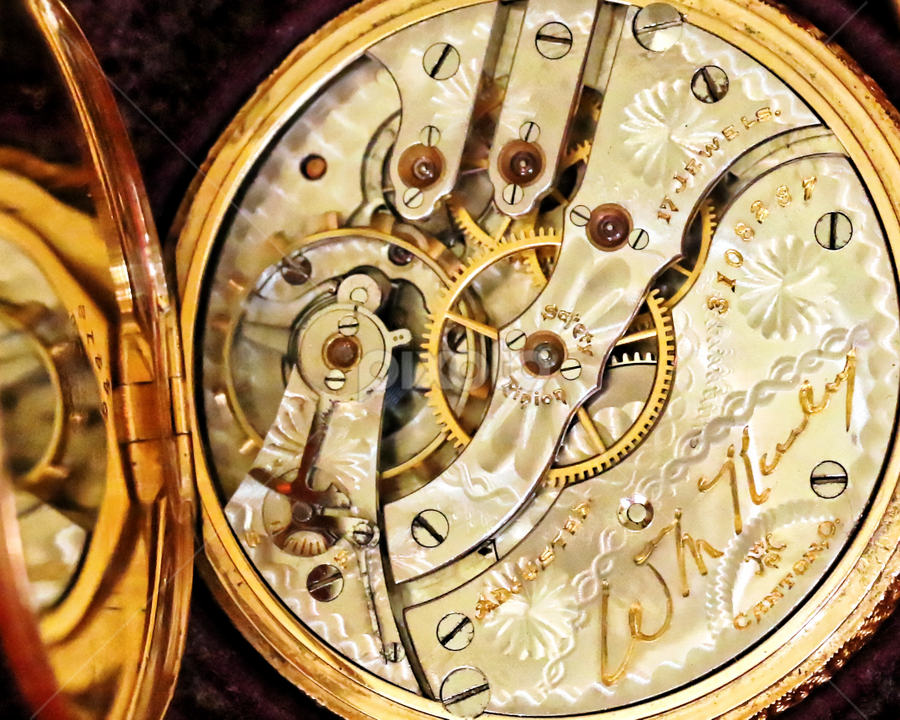 Watch 991 by Raphael RaCcoon - Artistic Objects Antiques (  )