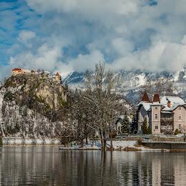 by Mario Horvat - City,  Street & Park  Vistas ( water, lake, travel, jezero, island, sneg, winter, touristic, slovenija, slovenia, snow, bled, castle )