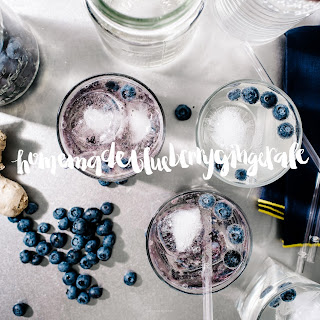 Homemade Ginger Ale Blueberry Spritzers