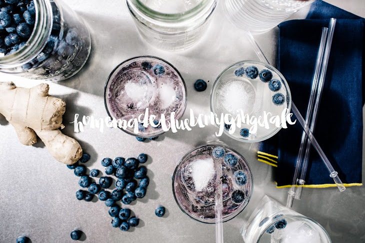 Homemade Ginger Ale Blueberry Spritzers Recipe | Yummly