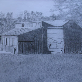 The Hen House by Alexander Jackson - Drawing All Drawing ( building, grass, art, trees, pencil drawing, hen house, drawing )