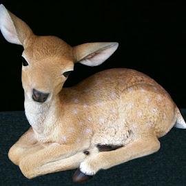 Endearing Deer 1 by RMC Rochester - Digital Art Animals ( abstract, colors, random, deer, animal )