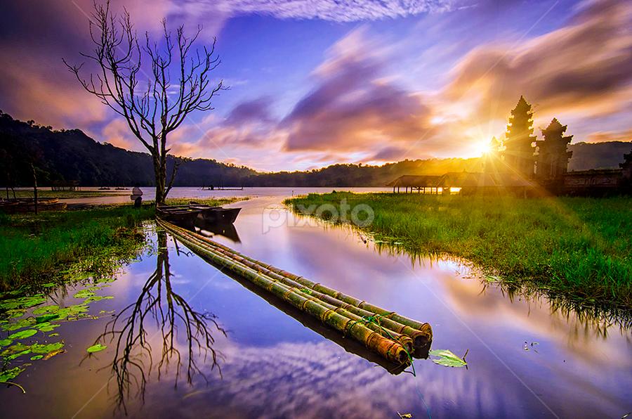 Under the tree by Hendri Suhandi - Landscapes Sunsets & Sunrises ( temple, bali, tree, lake, sunrise )