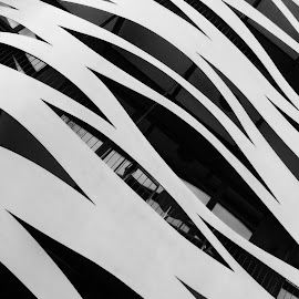 Catalan waves 2 by Brice Amram - Abstract Patterns ( abstract, building, facade, metal, waves, glass, wave, barcelona, spain )
