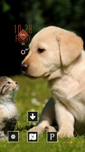 Puppy and Kitten - screenshot
