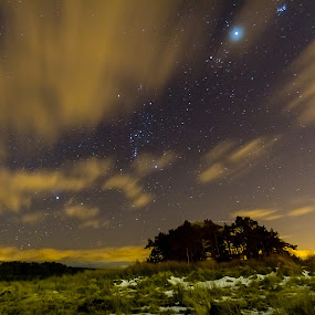 Space and Beyond by Mark Holm - Landscapes Starscapes ( grass, orion, cloud, forest, space )
