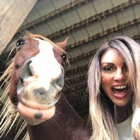 Horses Do Smile by Christopher Estrada - Animals Horses (  )