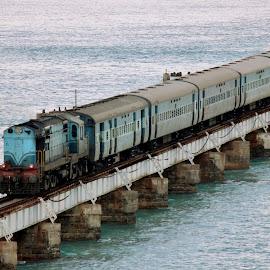 Sea Train... by Anoop Namboothiri - Transportation Trains ( railway, anoop namboothiri, sea, train, bridge,  )
