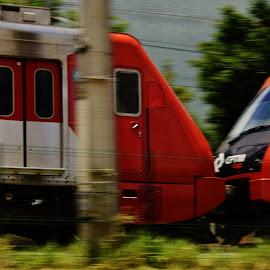 Sao Paulo SP Brazil  by Marcello Toldi - Transportation Trains