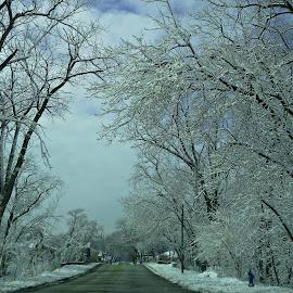 Snow track by Carlos Bautista Moriones - City,  Street & Park  Street Scenes