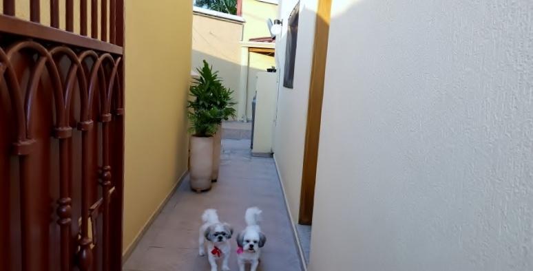 Casa 3 Dorm, Jardim da Glória, Cotia (SO3117) - Foto 3