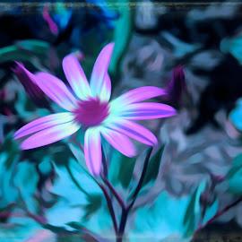 by Mark Wathen - Digital Art Abstract ( watercolor, purple, floers )