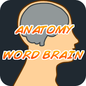 Anatomy WordBrain Quiz