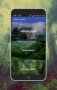 Forest Sounds - screenshot