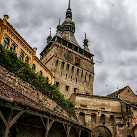 The sound of the Middle Ages by Bistra Stoimenova - Buildings & Architecture Public & Historical ( sighisoara, fortress, clock tower, historic district, romania, travel, medieval, travel photography )