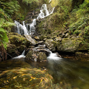 Killarney Waterfall by Jirka Vráblík - Landscapes Forests ( waterfall, killarney, ireland )