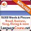 Learn Dutch Vocabulary Free