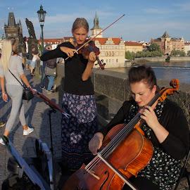 Musicians by Luboš Zámiš - People Musicians & Entertainers