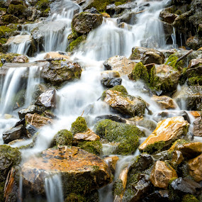 Water Falls by Dallas Golden - Nature Up Close Water ( water, utah, moss, long exposure, water fall )