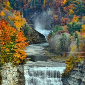 Fall folliage of letchworth state pak from Inspiration point.  by Jim Davis - Landscapes Waterscapes ( pines, water, orange, greens, stream, cliffs, waterfalls, railroad, creek river, landscape, railroad bridge, fall folliage, letchworth, colors red, state park, autumn colors, river )