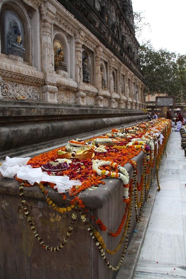 Walk along  by Leelamohan Anantharaju - Abstract Macro ( buddha, mahabodhi, temple, flower deck )