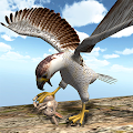 American Falcon Wild Sim 2016 APK for Bluestacks