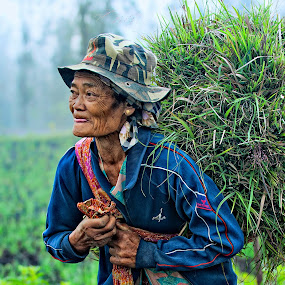 The Farmer of Mt Bromo, East Java, Indonesia by Mdnoh Mnj - People Portraits of Women