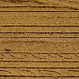 Campos do Jordão SP Brazil  by Marcello Toldi - Abstract Patterns