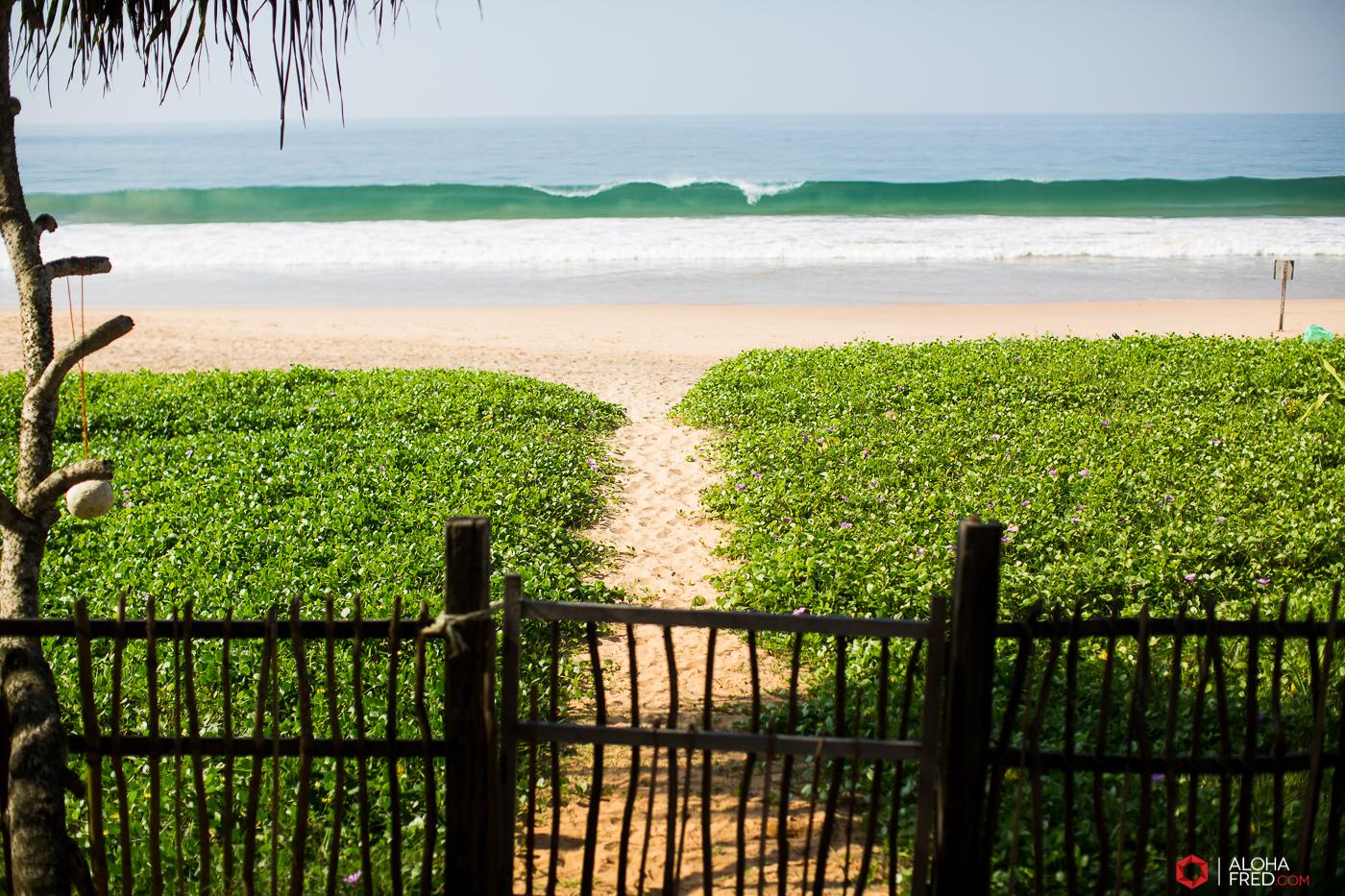 0084 - Sri Lanka - CP1A7631