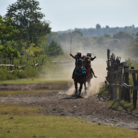 Pacuan by Imam Mukti Wibowo - Sports & Fitness Other Sports ( ride, speed, horse, race, championship )