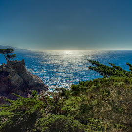 by Max Juan - Landscapes Mountains & Hills ( maxretouch, monterey, tree, california, green,  )