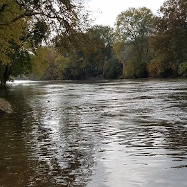 Natural River by Elberta Bocock - Nature Up Close Water ( water, nature, riverside, serenity, nature up close, photography, river )