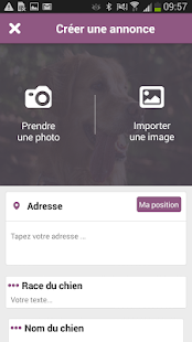 Scooty chien chat perdu trouvé - screenshot